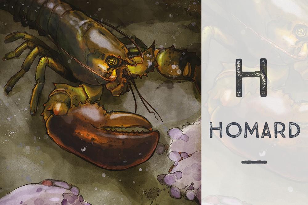 H pour HOMARD