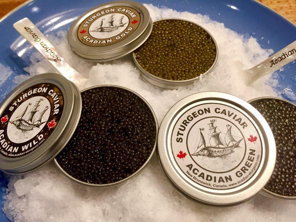 Le caviar, l'or noir de la Baie de Fundy