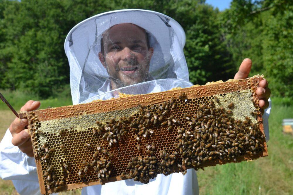 Le miel de Canoe Cove